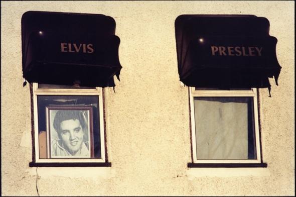 Elvis-©-David-Secombe
