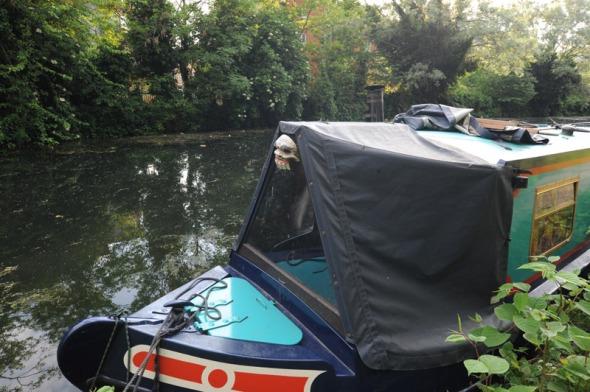 Longboat-&-mask
