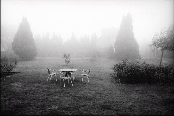 Suburban garden in November, Cheam, Surrey, 1979. © David Secombe.